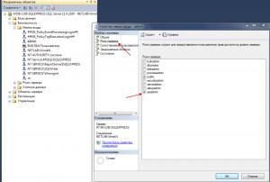 SQL User role