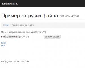 excelPdfPage