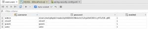 user bcrypt password