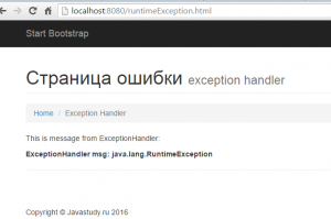 mvcExceptions page
